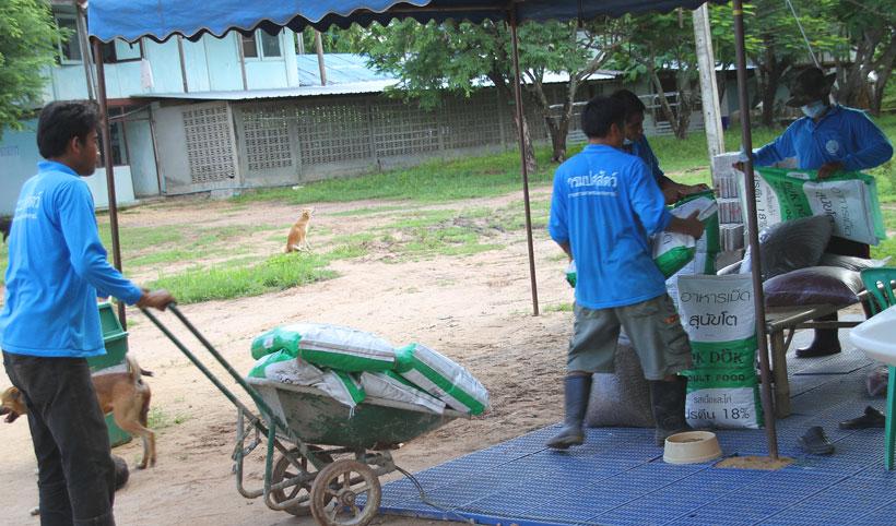 Northern Thai shelter…