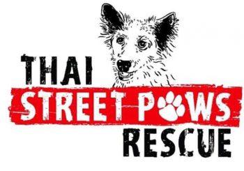 K9Aid | Thai Street Paws Rescue